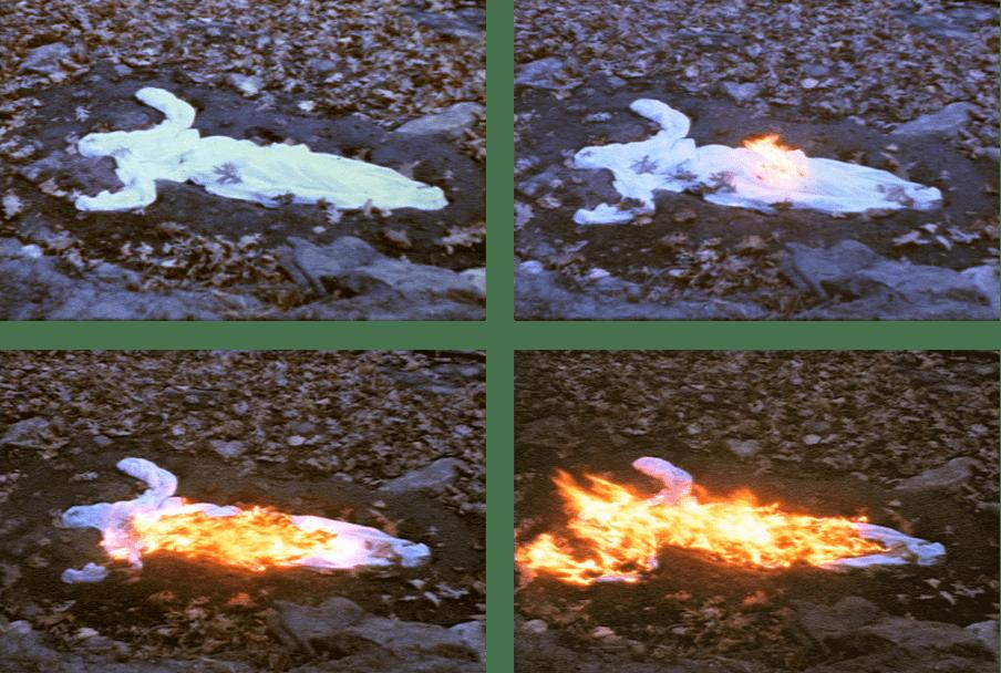 Fig. 2. Silueta Alma Silueta en Fuego
